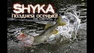 Рыбалка на щуку поздней осенью