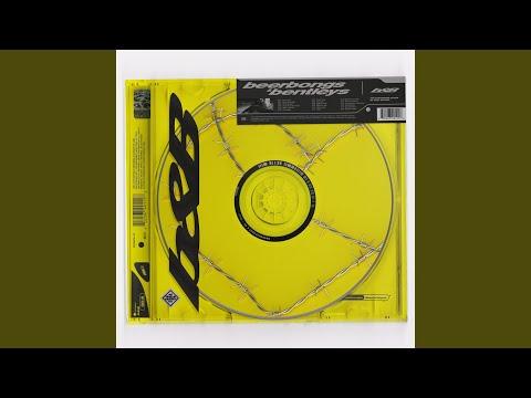 Download Video & MP3 320kbps: Post Malone Beerbongs