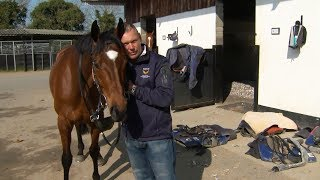 Tiger Roll | 2019 Grand National Glory Awaits