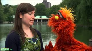 Sesame Street: Word on the Street -- Vibrate