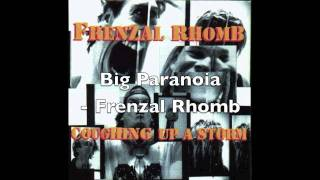 Big Paranoia - Frenzal Rhomb