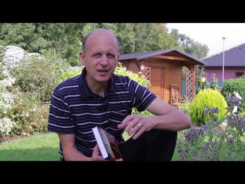 Způsob injekční aplikace inzulínu injekční stříkačky pero videa