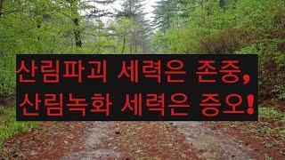 산림파괴에도 성공한 김일성 일가, 25년 사이 40% 사라져!