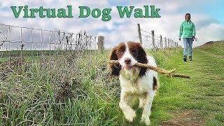 Dog Walking TV - Virtual Dog Walk - Coastal Path