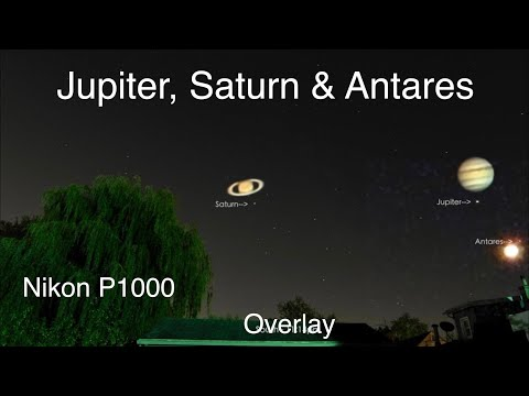 The 2 Gas Giants & the Star Antares - Nikon P1000 Camera