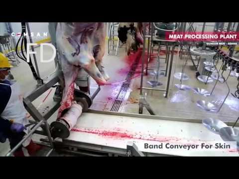 gratis download video - MENGERIKAN ! Proses Baru Pemotongan Sapi Dalam Pabrik !!