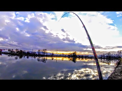Scaricare una melodia da dialoghi su pesca