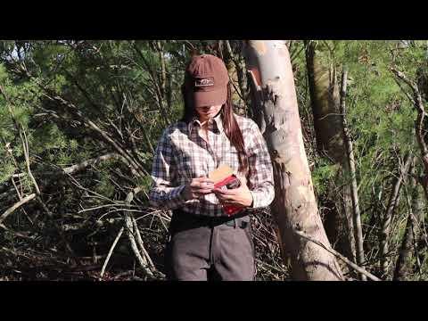 Blaser, ropa hecha para cazar