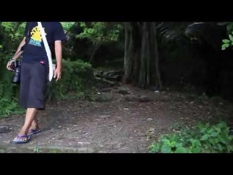 Kuburan Bali Aga Terunyan