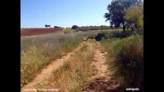 preview picture of video 'Caminos de Moral de Calatrava desde mi bici'