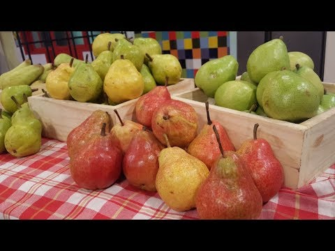 La pera, sus variedades y virtudes