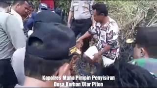 preview picture of video 'Kapolres Muna Pimpin Penyisiran Desa Korban Ular Piton'