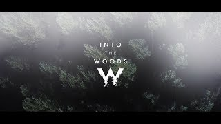 Into the Woods Festival 2020
