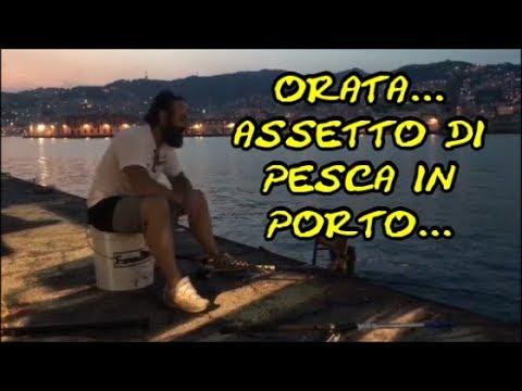 Il sito web di pescatori che pescano su Ob