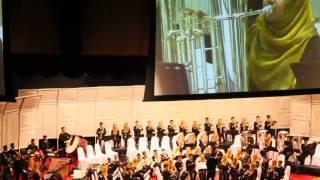 Finale Wind Orchestra SBP 2014 Sekolah Menengah Sains Machang : Tanah Pusaka (Johan)