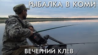 РЫБАЛКА В КОМИ / ВЕЧЕРНИЙ КЛЕВ
