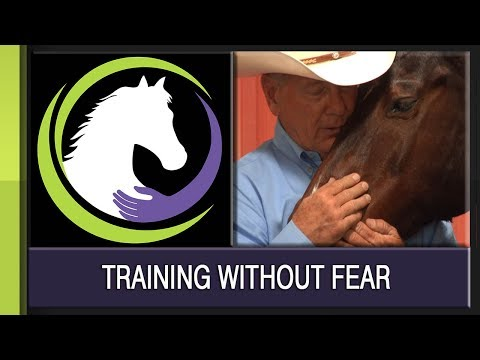Training Without Fear