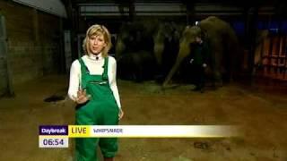 Aardvark dungarees in TV appearance