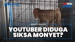 Petugas Sita 3 Kera dari YouTuber di Jaksel, Diduga Menyiksa dan Minta Anak-anak Tampar Monyet