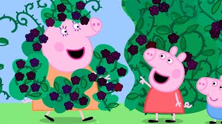 Peppa Pig Official Channel | The Blackberry Bush