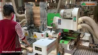 CNC DOUBLE END TENONER   MÁY PHAY MỘNG 2 ĐẦU TỐC ĐỘ CAO   WM-D200CNC   Woodmaster VietNam