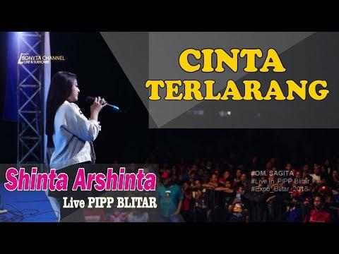 Shinta arsinta   cinta terlarang  sagita live pipp blitar 2018