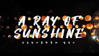 #가을 밤 산책 #A RAY OF SUNSHINE #선사축제 빛 전시