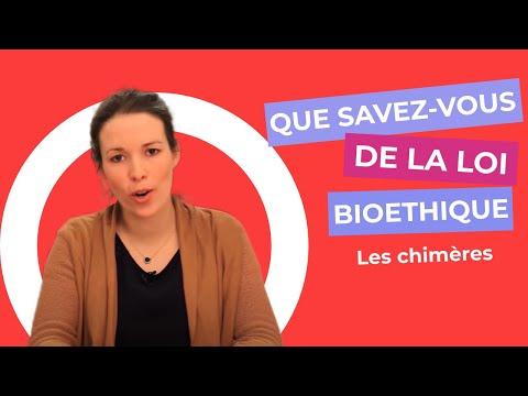 Watch videoQue savez-vous de la loi de bioéthique (3) : les chimères.