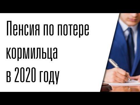 Пенсия по потере кормильца в 2020 году
