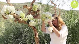 Inspired Floral Design With Beth OReilly: Driftwood Tree Tablescape
