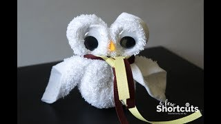 How To Make A Washcloth Owl - Harry Potter Craft