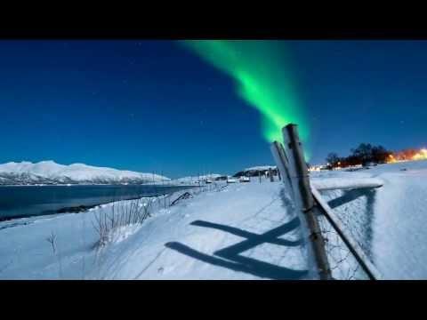 Зоны Арктических пустынь