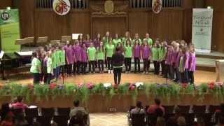 Kärntner Landesjugendsingen 2013 | Chor der HS Feistritz Drau