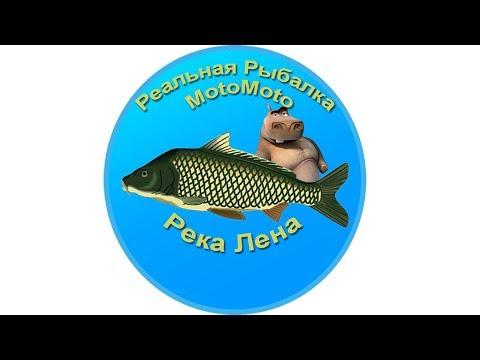 Река Лена | Реальная Рыбалка