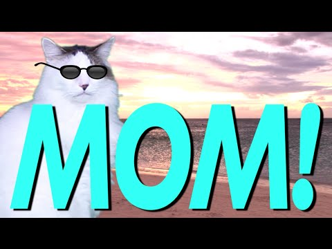 Download HAPPY BIRTHDAY MOM! - EPIC CAT Happy Birthday Song HD Mp4 3GP Video and MP3