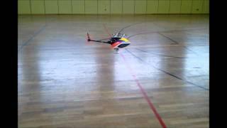 Pascal Richter - T Rex 250 Se Indoor