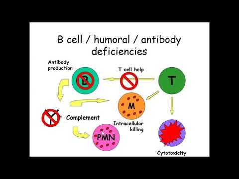 hemohelp enterobiosis