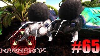 triceratops ark zähmen
