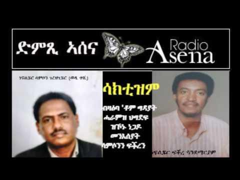 Voice of Assenna: Sacctism: PFDJ ideology of destruction