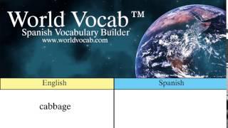 Free Spanish Quick Vocab™ :Cabbage - la col