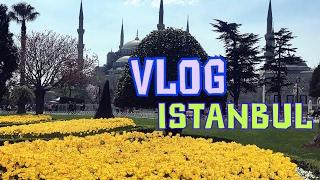 VLOG Фестиваль тюльпанов в Стамбуле\Турецкий здоровый завтрак\Султанахмет\GBQblog