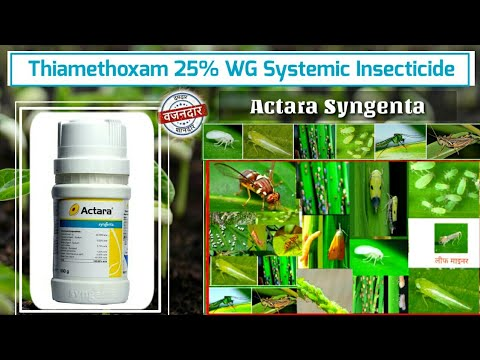 , title : 'Thiamethoxam 25% WG | Actara Syngenta | Systemic insecticide Insecticide | कीटनाशक