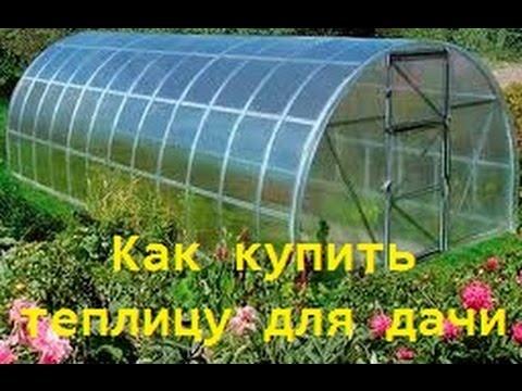 Ходченкова фильмы гороскоп на удачу