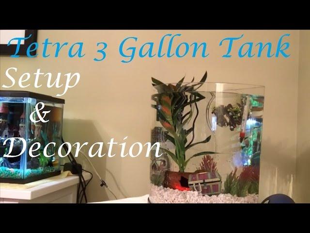 Tank Setup! | How to Set Up the Tetra 3 Gallon Halfmoon Aquarium