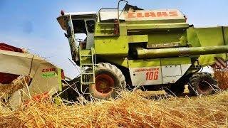 Claas Dominator 106 At Work [ Harvest 2013 ]