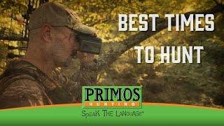 Best Times to Hunt Deer