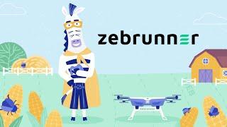 Zebrunner video