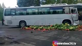 В Лесозаводске  в результате столкновения автобуса и грузовика по асфальту растекся арбузный «Фреш»