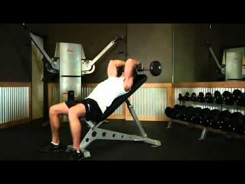 EZ Bar Incline Triceps Extension