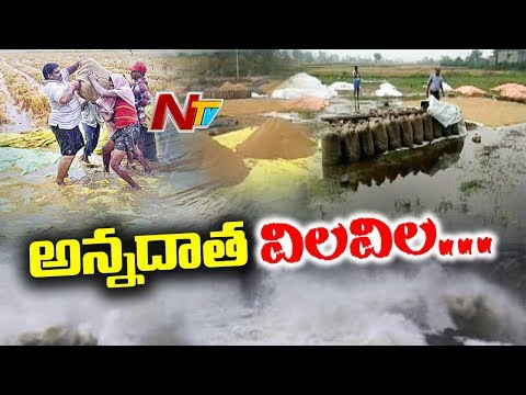 Unseasonal Rain Damages Mango & Maize Crops In Telangana | NTV